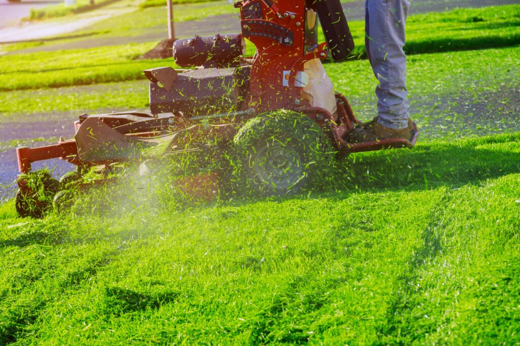 3 Most Important Steps for Effective Lawn Care Buffalo NY | 7164000763